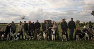 chasse a la journee en corse du sud