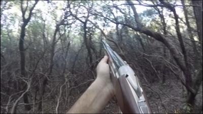 chasse au perdreaux en corse