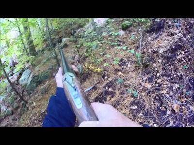 chasse au sanglier en corse bandittu 20