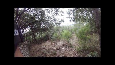 chasse au sanglier en corse du sud 2014