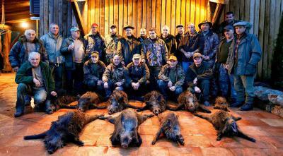 chasse au sanglier en corse du sud