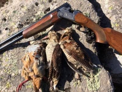 chasse en corse a la becasse