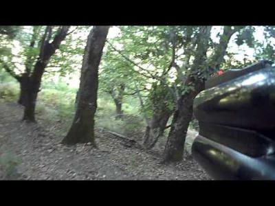 chasse en corse au sanglier 2014