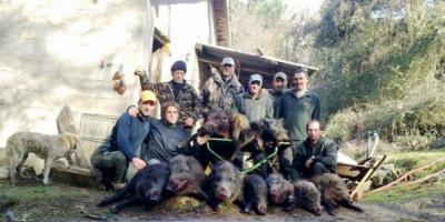 chasse en corse bocognano