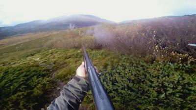 chasse en montagne corse