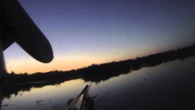 chasse gibier d'eau en corse