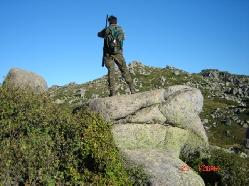 chasse in corse