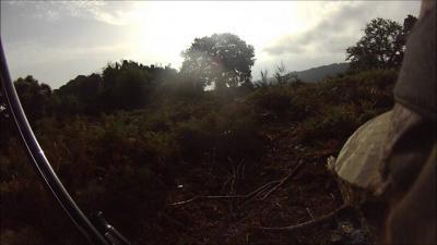 chasse palombe en corse 2012