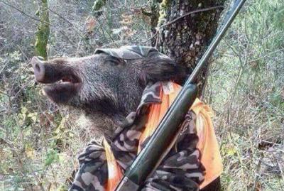 chasse sanglier corse pistolet