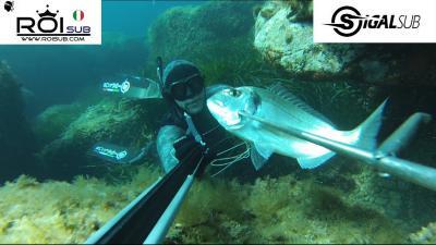 chasse sous marine en corse 2014