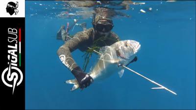 chasse sous marine en corse 2015