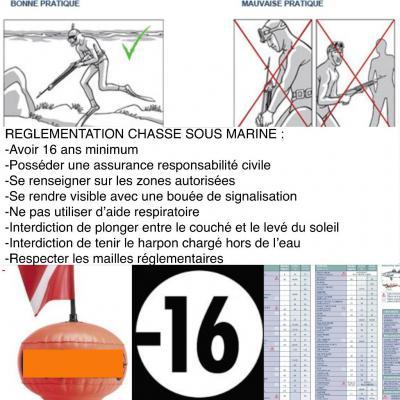 chasse sous marine en corse reglementation