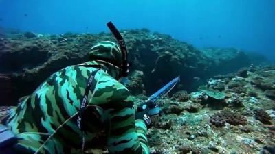 chasse sous marine profonde en corse