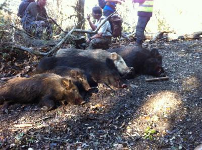 fermeture de la chasse en corse 2015