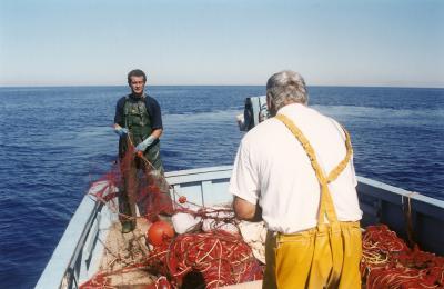 peche en mer haute corse