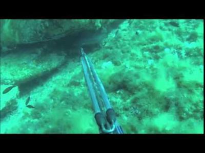 peche sous marine en corse