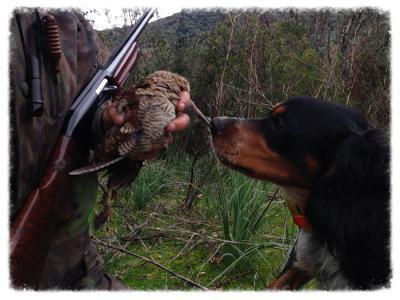 periode de chasse en corse